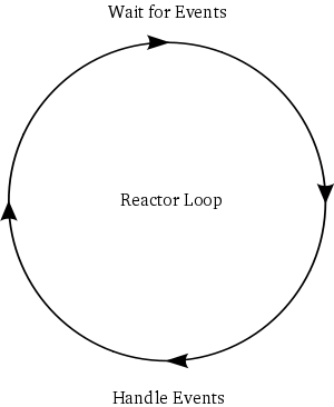 Figure 5: the reactor loop